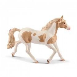 Caballos - Yegua Paint Horse